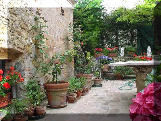The garden for Tuscan courtyard landscaping